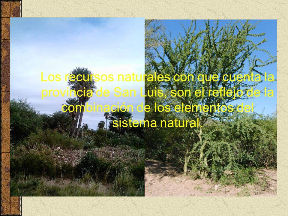 Los recursos naturales con que cuenta la provincia de San Luis, son el reflejo de la combinación de los elementos del sistema natural.