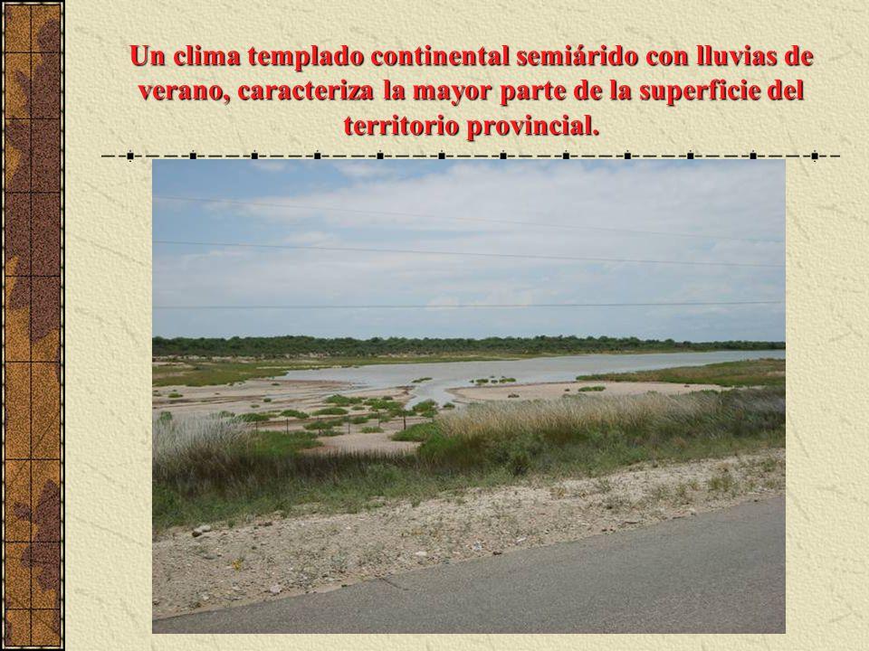 Un clima templado continental semiárido con lluvias de verano, caracteriza la mayor parte de la superficie del territorio provincial.