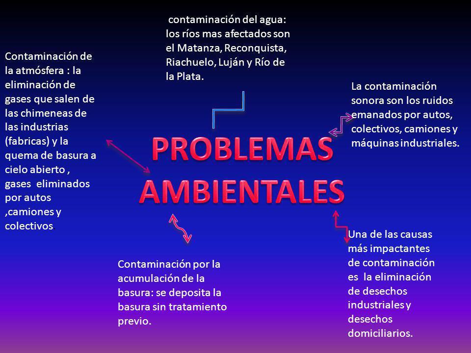 contaminación del agua: los ríos mas afectados son el Matanza, Reconquista, Riachuelo, Luján y Río de la Plata. Una de las causas más impactantes de c
