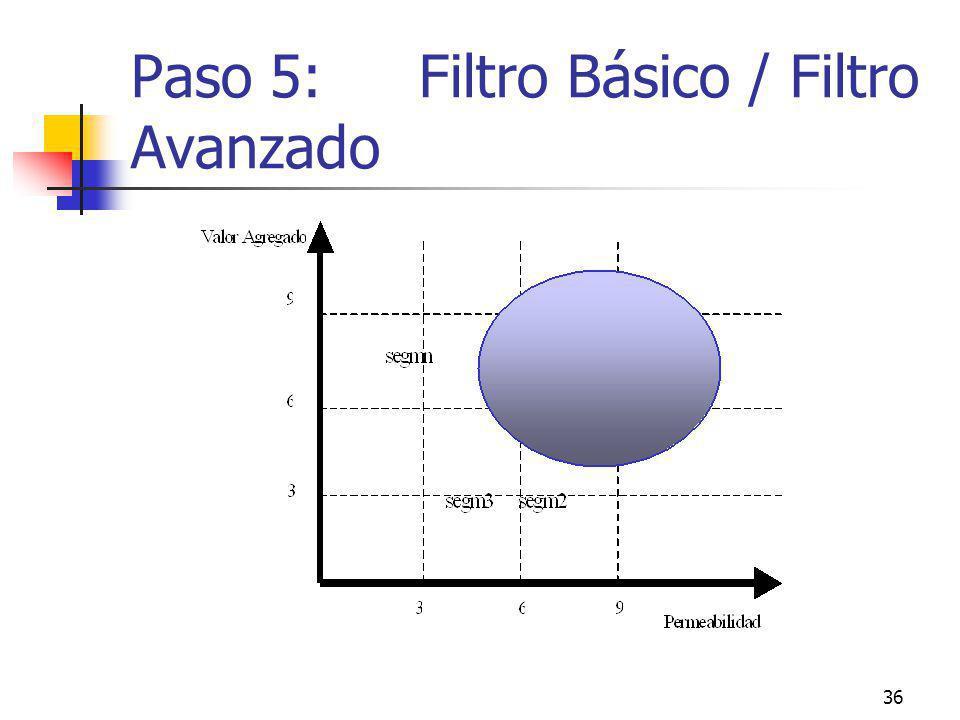 36 Paso 5: Filtro Básico / Filtro Avanzado