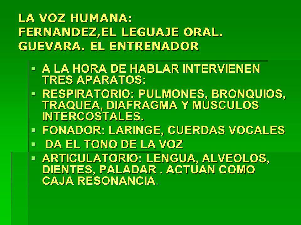 LA VOZ HUMANA: FERNANDEZ,EL LEGUAJE ORAL. GUEVARA. EL ENTRENADOR A LA HORA DE HABLAR INTERVIENEN TRES APARATOS: A LA HORA DE HABLAR INTERVIENEN TRES A