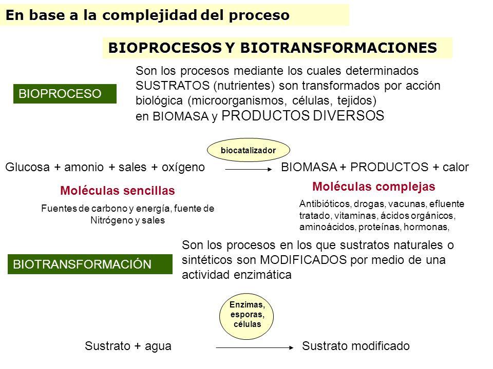 PROCESO BIOTECNOLÓGICO Es una SECUENCIA de OPERACIONES o etapas que resulta en la obtención de un producto que resulta en la obtención de un producto PRODUCTO Antibióticos, drogas, vacunas, efluente tratado, vitaminas, ácidos orgánicos, aminoácidos, proteínas, hormonas, ELEMENTO DISTINTIVO DEL BIOPROCESO Uso de un Bioreactor La reacción ocurre en forma controlada Bioreactor artificial Bioreactor natural Animales transgénicos Uso de un catalizador biológico Enzima, microorganismos, células vegetales, células animales, esporas de hongos