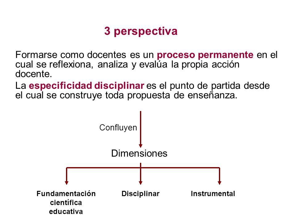 3 perspectiva Formarse como docentes es un proceso permanente en el cual se reflexiona, analiza y evalúa la propia acción docente.