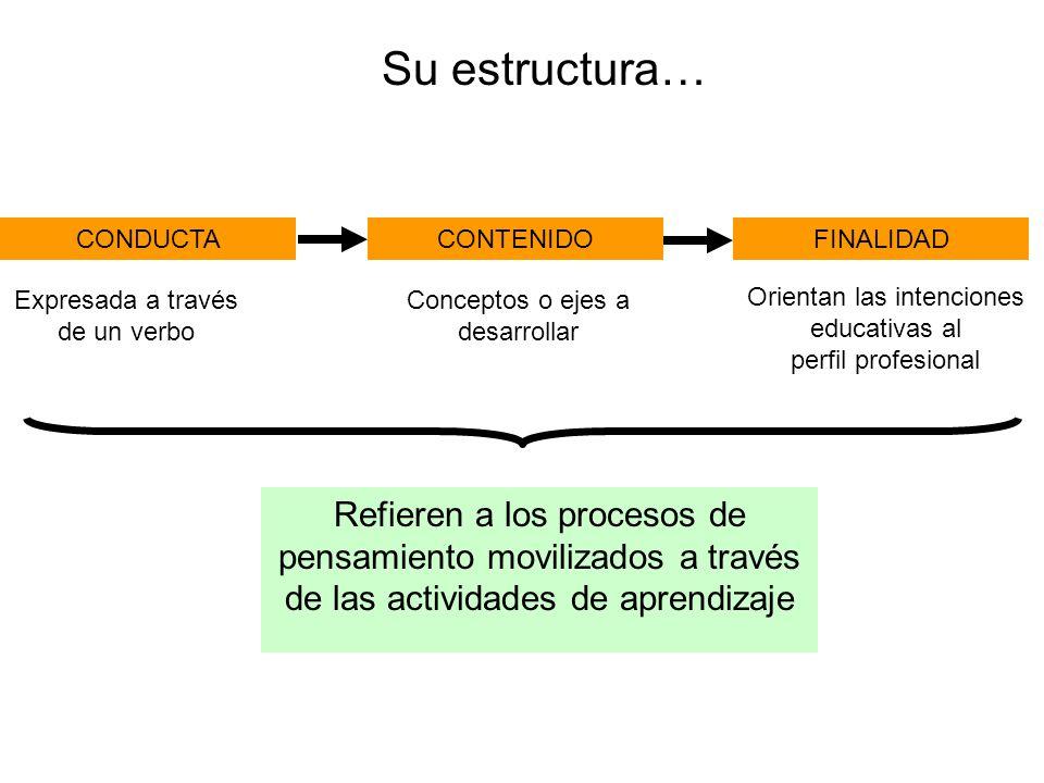 Refieren a los procesos de pensamiento movilizados a través de las actividades de aprendizaje CONDUCTACONTENIDOFINALIDAD Su estructura… Expresada a través de un verbo Conceptos o ejes a desarrollar Orientan las intenciones educativas al perfil profesional