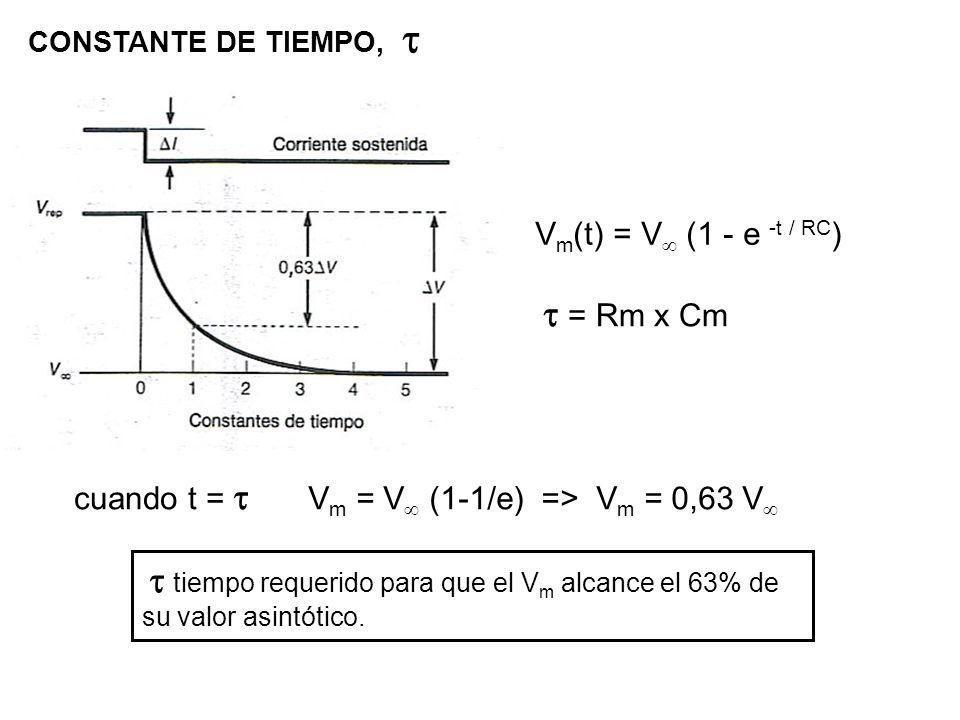 CONSTANTE DE TIEMPO, V m (t) = V (1 - e -t / RC ) = Rm x Cm cuando t = V m = V (1-1/e) => V m = 0,63 V tiempo requerido para que el V m alcance el 63%