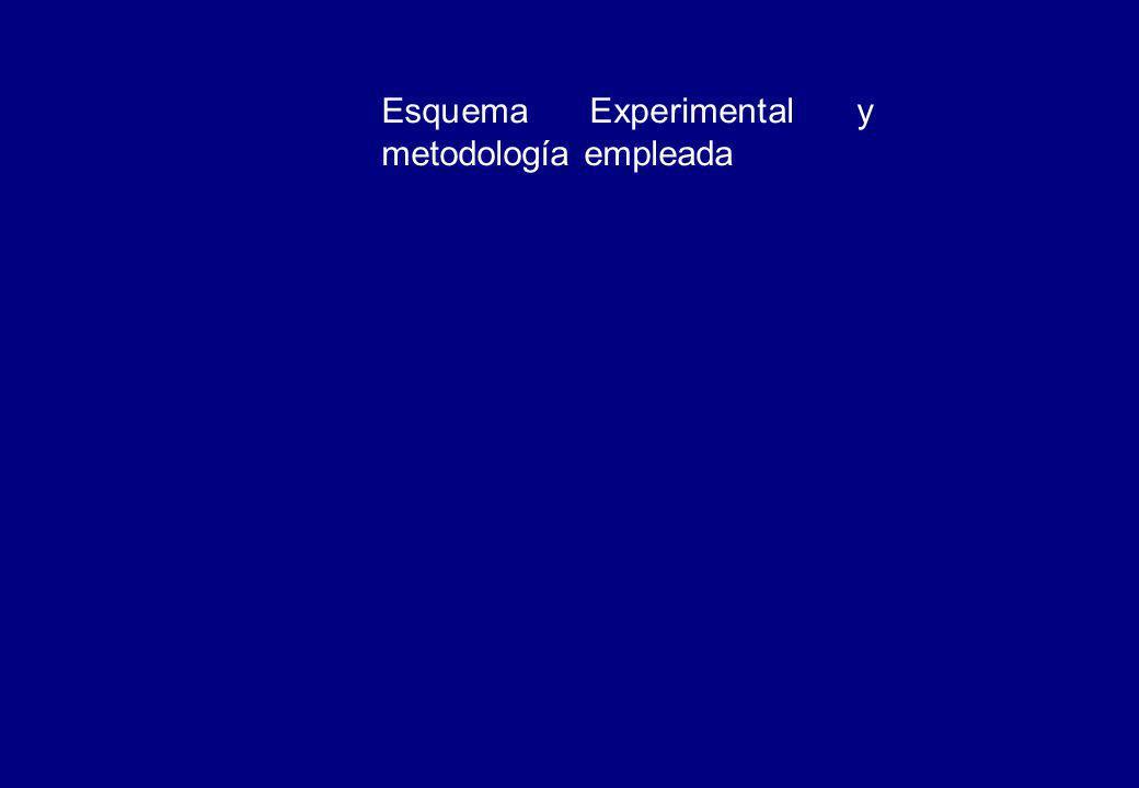 Esquema Experimental y metodología empleada