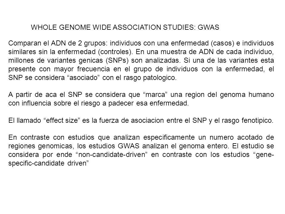 WHOLE GENOME WIDE ASSOCIATION STUDIES: GWAS Comparan el ADN de 2 grupos: individuos con una enfermedad (casos) e individuos similares sin la enfermeda