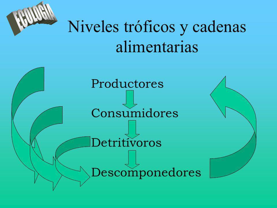 Niveles tróficos y cadenas alimentarias Productores Consumidores Detritívoros Descomponedores