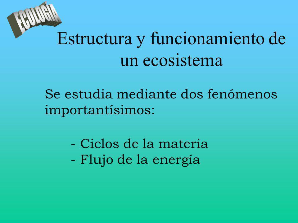 Estructura y funcionamiento de un ecosistema - Ciclos de la materia - Flujo de la energía Se estudia mediante dos fenómenos importantísimos: