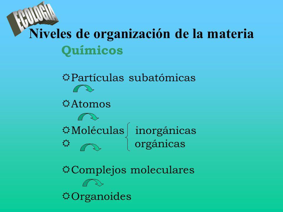 Niveles de organización de la materia Químicos RPartículas subatómicas RAtomos RMoléculas inorgánicas R orgánicas RComplejos moleculares ROrganoides