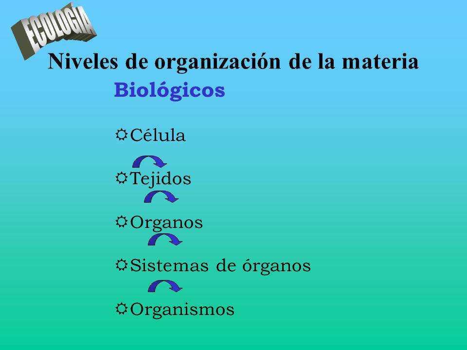 Niveles de organización de la materia Biológicos RCélula RTejidos ROrganos RSistemas de órganos ROrganismos