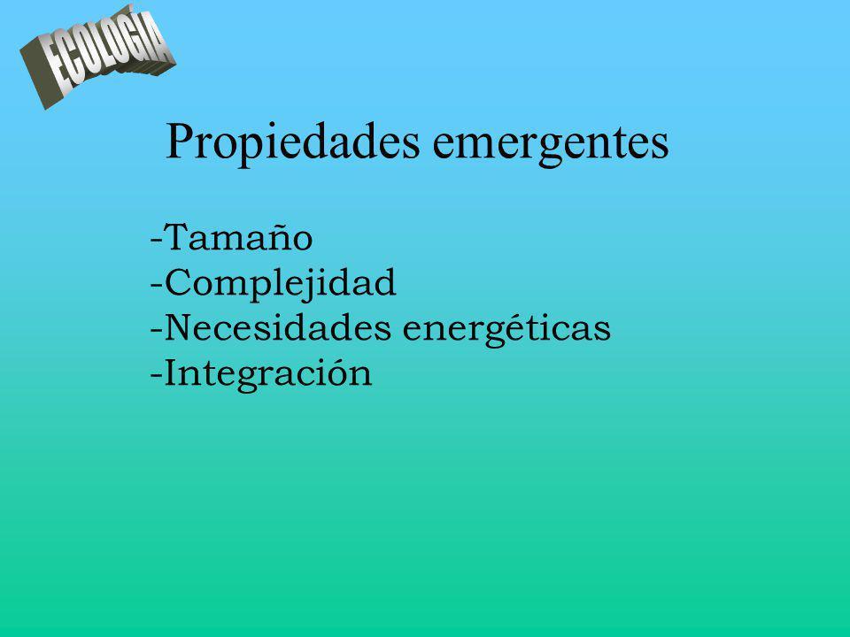 Propiedades emergentes -Tamaño -Complejidad -Necesidades energéticas -Integración