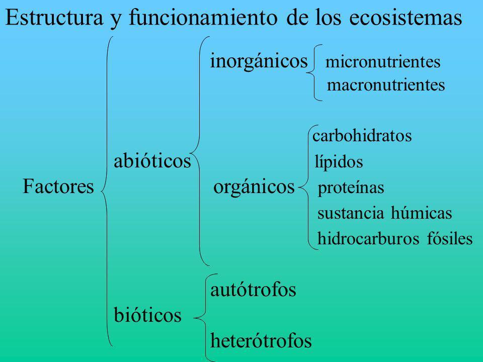 Estructura y funcionamiento de los ecosistemas inorgánicos micronutrientes macronutrientes carbohidratos abióticos lípidos Factores orgánicos proteína