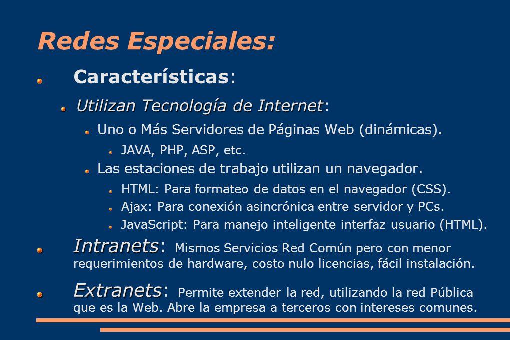 Redes Especiales: Características: Utilizan Tecnología de Internet Utilizan Tecnología de Internet: Uno o Más Servidores de Páginas Web (dinámicas).