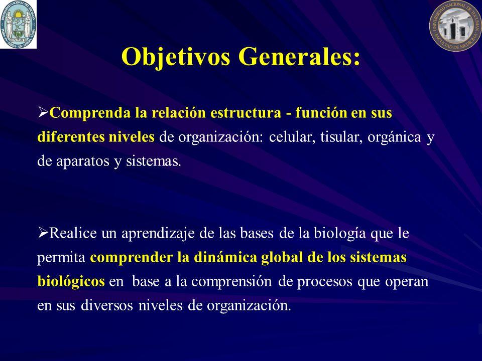 Objetivos Generales: Comprenda la relación estructura - función en sus diferentes niveles de organización: celular, tisular, orgánica y de aparatos y sistemas.
