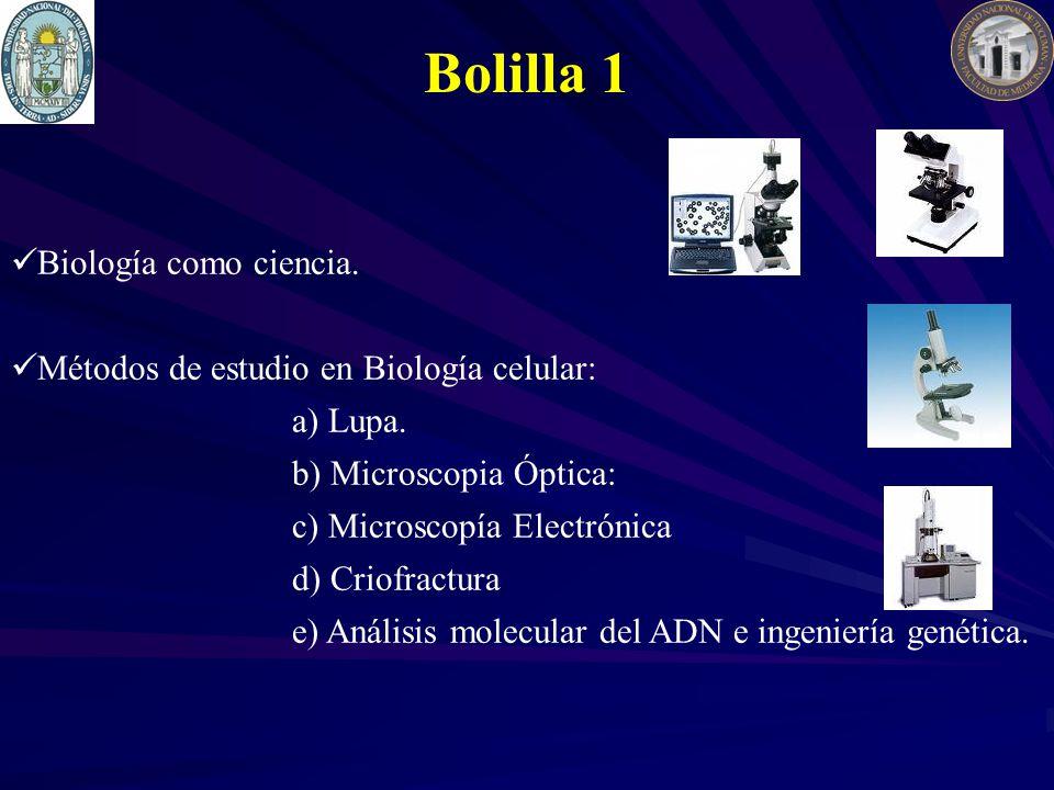 Biología como ciencia. Métodos de estudio en Biología celular: a) Lupa. b) Microscopia Óptica: c) Microscopía Electrónica d) Criofractura e) Análisis