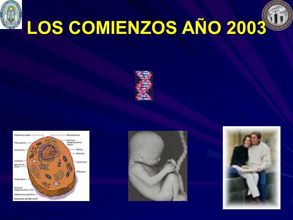 LOS COMIENZOS AÑO 2003