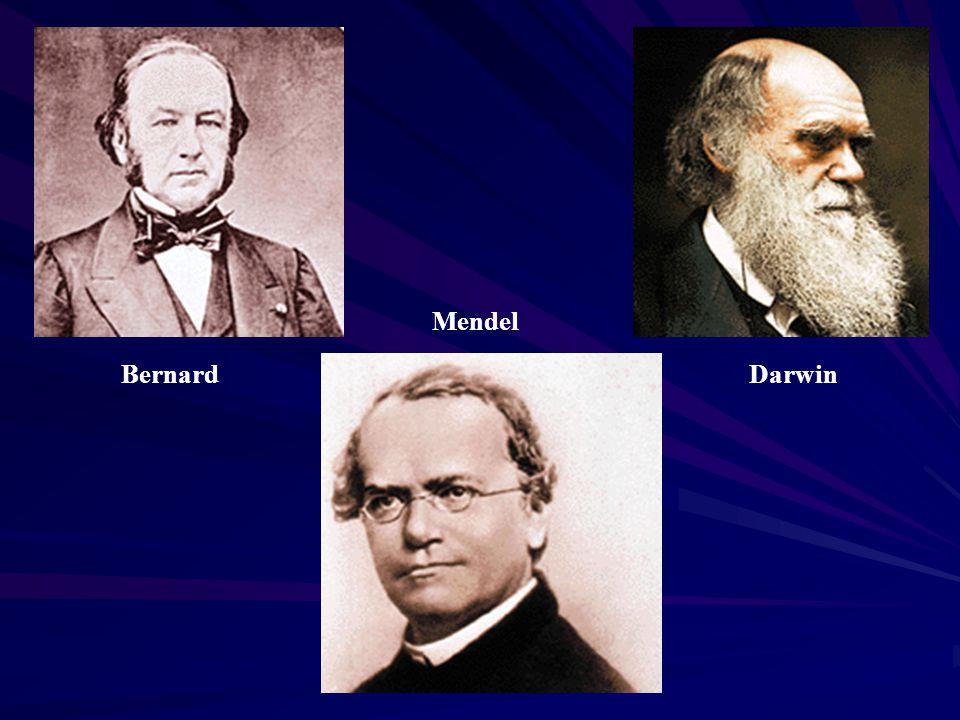 Bernard Mendel Darwin