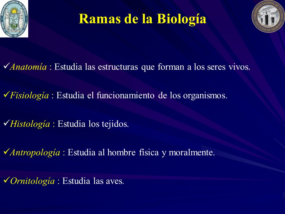 Anatomía : Estudia las estructuras que forman a los seres vivos.