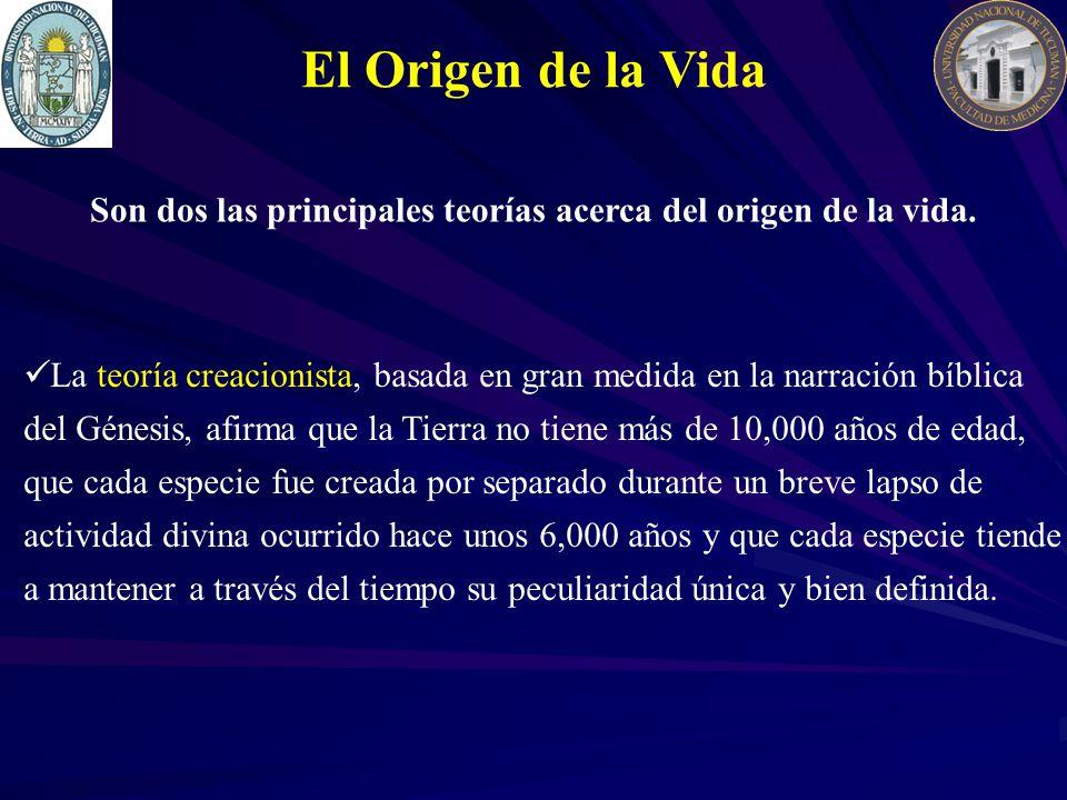 El Origen de la Vida La teoría creacionista, basada en gran medida en la narración bíblica del Génesis, afirma que la Tierra no tiene más de 10,000 añ