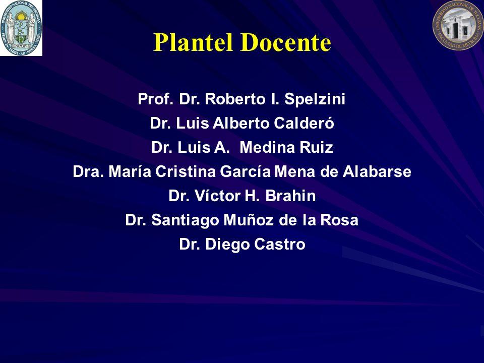 Plantel Docente Prof. Dr. Roberto I. Spelzini Dr. Luis Alberto Calderó Dr. Luis A. Medina Ruiz Dra. María Cristina García Mena de Alabarse Dr. Víctor