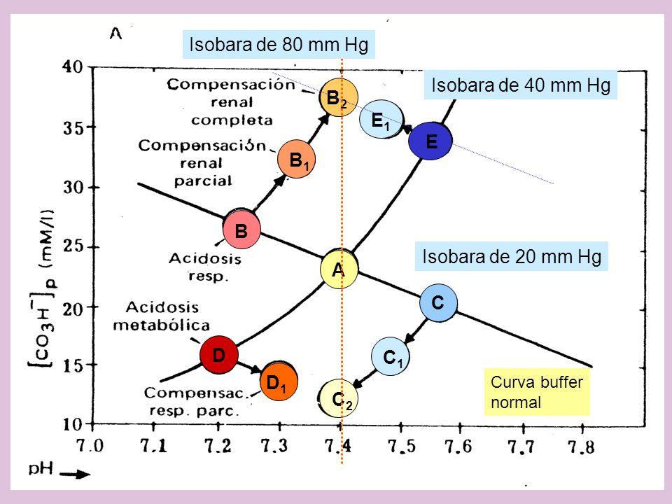 A C B B1B1 B2B2 C1C1 C2C2 D D1D1 E E1E1 Isobara de 40 mm Hg Curva buffer normal Isobara de 20 mm Hg Isobara de 80 mm Hg