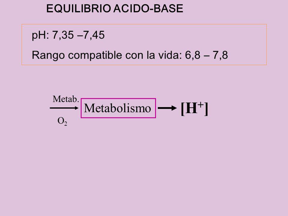 Metab. O2O2 Metabolismo [H + ] EQUILIBRIO ACIDO-BASE pH: 7,35 –7,45 Rango compatible con la vida: 6,8 – 7,8