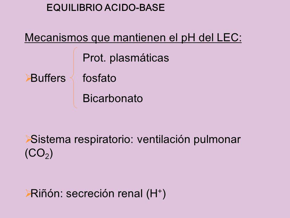 EQUILIBRIO ACIDO-BASE Mecanismos que mantienen el pH del LEC: Prot. plasmáticas Buffersfosfato Bicarbonato Sistema respiratorio: ventilación pulmonar