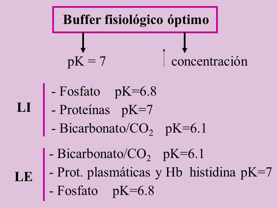 Buffer fisiológico óptimo pK = 7concentración LI - Fosfato pK=6.8 - Proteínas pK=7 - Bicarbonato/CO 2 pK=6.1 LE - Bicarbonato/CO 2 pK=6.1 - Prot. plas