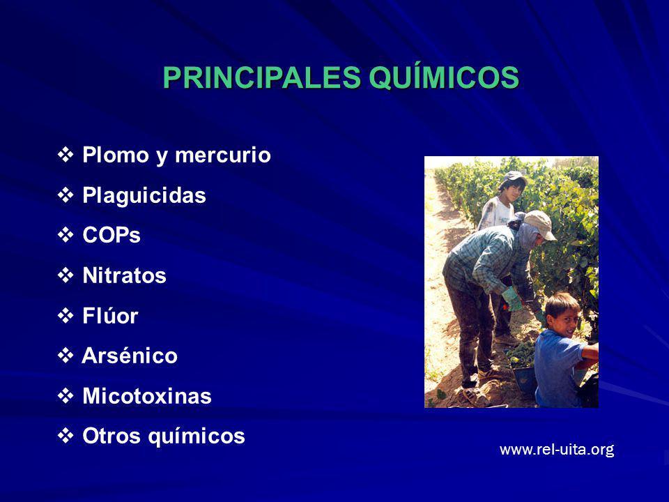 Plomo y mercurio Plaguicidas COPs Nitratos Flúor Arsénico Micotoxinas Otros químicos PRINCIPALES QUÍMICOS www.rel-uita.org