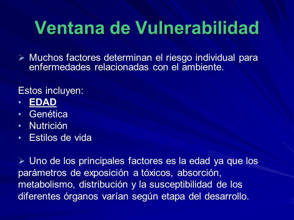 Ventana de Vulnerabilidad Muchos factores determinan el riesgo individual para enfermedades relacionadas con el ambiente. Estos incluyen: EDAD Genétic