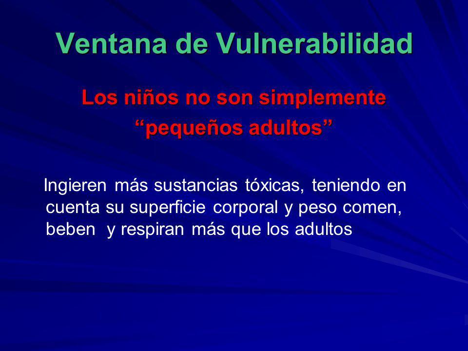 Ventana de Vulnerabilidad Los niños no son simplemente pequeños adultos Ingieren más sustancias tóxicas, teniendo en cuenta su superficie corporal y p