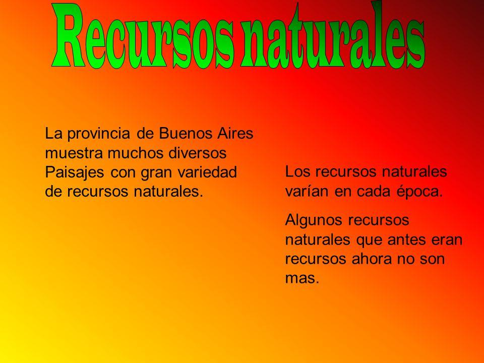 La provincia de Buenos Aires muestra muchos diversos Paisajes con gran variedad de recursos naturales. Los recursos naturales varían en cada época. Al