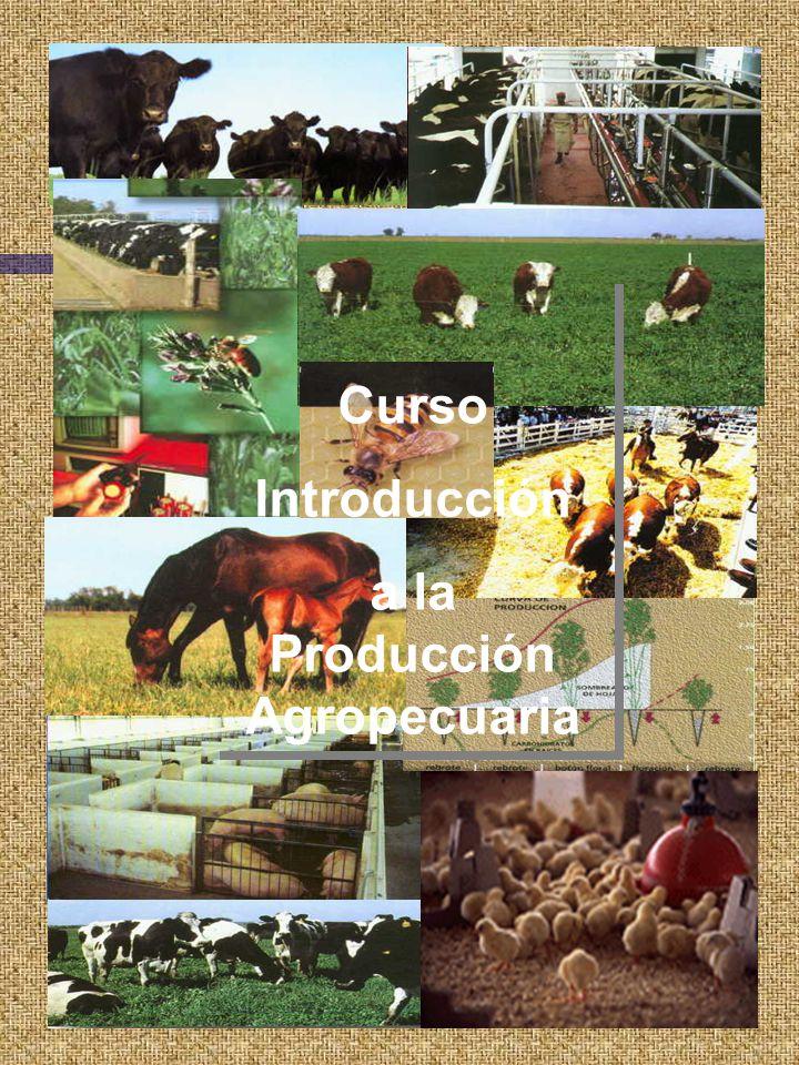 Curso Introducción a la Producción Agropecuaria Curso Introducción a la Producción Agropecuaria