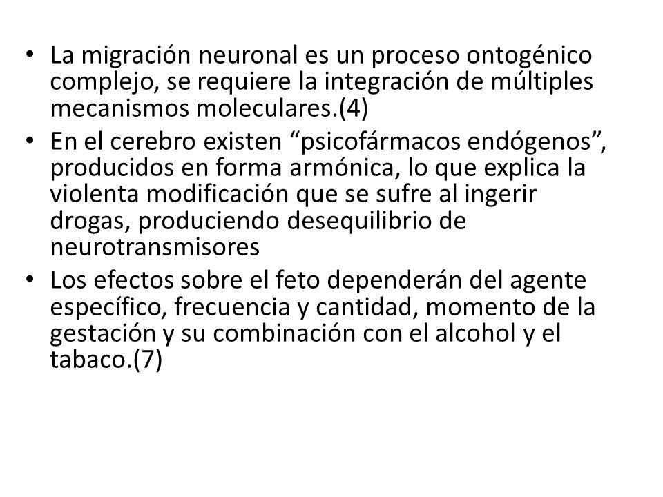 La migración neuronal es un proceso ontogénico complejo, se requiere la integración de múltiples mecanismos moleculares.(4) En el cerebro existen psic
