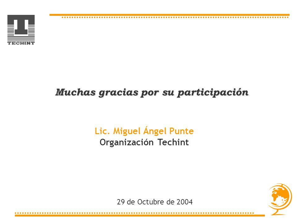 Muchas gracias por su participación Lic. Miguel Ángel Punte Organización Techint 29 de Octubre de 2004