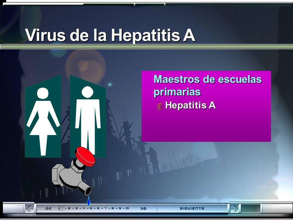 Maestros de escuelas primarias Maestros de escuelas primarias 4 Hepatitis A