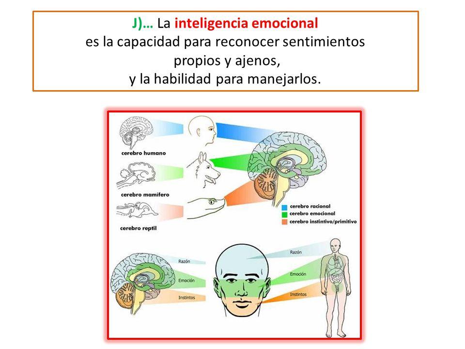 J)… La inteligencia emocional es la capacidad para reconocer sentimientos propios y ajenos, y la habilidad para manejarlos.