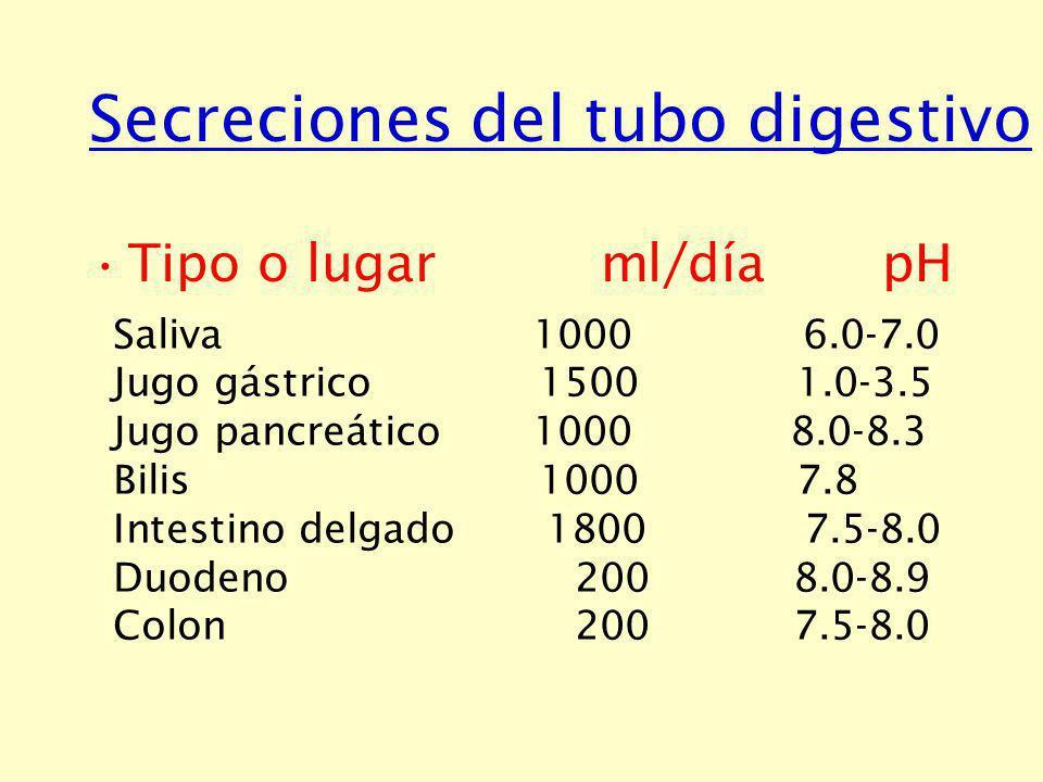 Secreción salival Principales glándulas salivales: Parótida (serosa) Submaxilar (mixta) Sublingual (mixta)