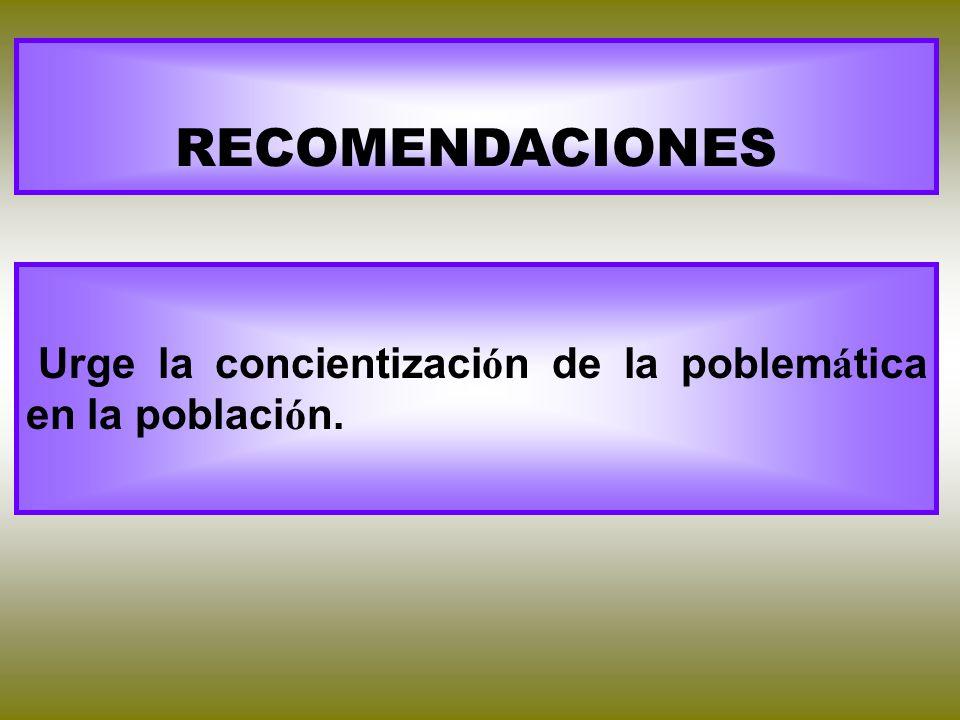RECOMENDACIONES Urge la concientizaci ó n de la poblem á tica en la poblaci ó n.