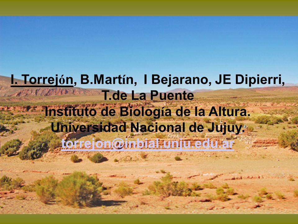 I. Torrej ó n, B.Mart í n, I Bejarano, JE Dipierri, T.de La Puente Instituto de Biolog í a de la Altura. Universidad Nacional de Jujuy. torrejon@inbia