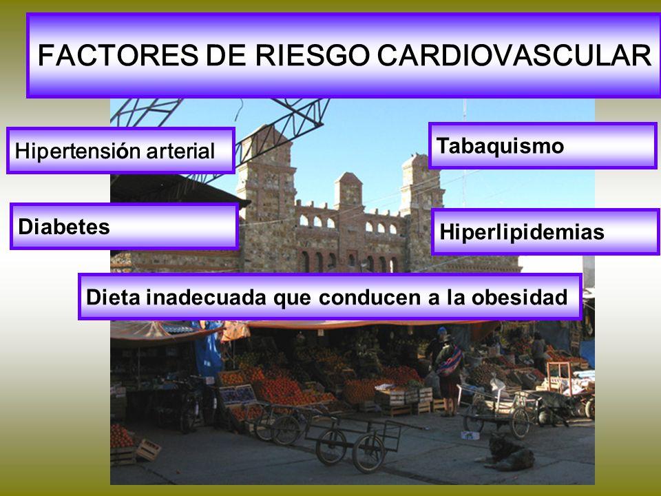 FACTORES DE RIESGO CARDIOVASCULAR Hipertensi ó n arterial Tabaquismo Diabetes Hiperlipidemias Dieta inadecuada que conducen a la obesidad