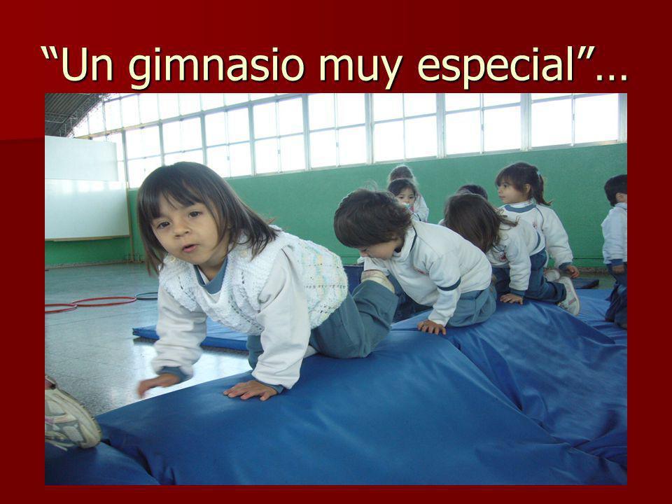 Un gimnasio muy especial…