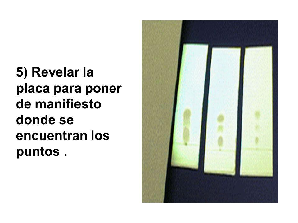 5) Revelar la placa para poner de manifiesto donde se encuentran los puntos.