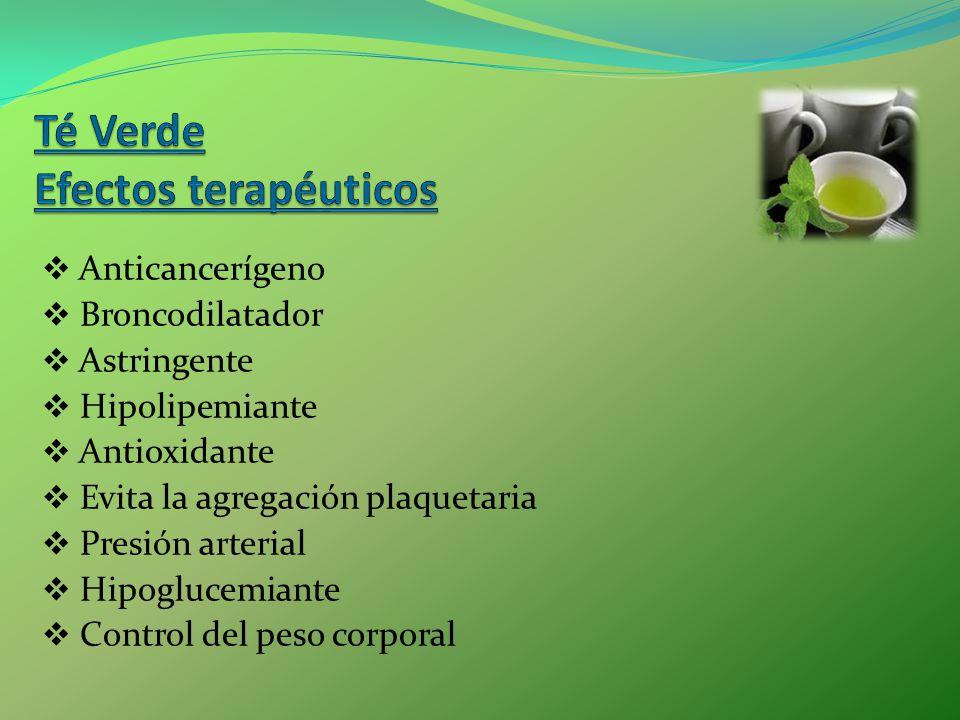 Anticancerígeno Broncodilatador Astringente Hipolipemiante Antioxidante Evita la agregación plaquetaria Presión arterial Hipoglucemiante Control del p