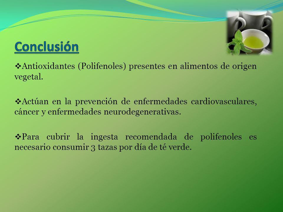 Antioxidantes (Polifenoles) presentes en alimentos de origen vegetal. Actúan en la prevención de enfermedades cardiovasculares, cáncer y enfermedades
