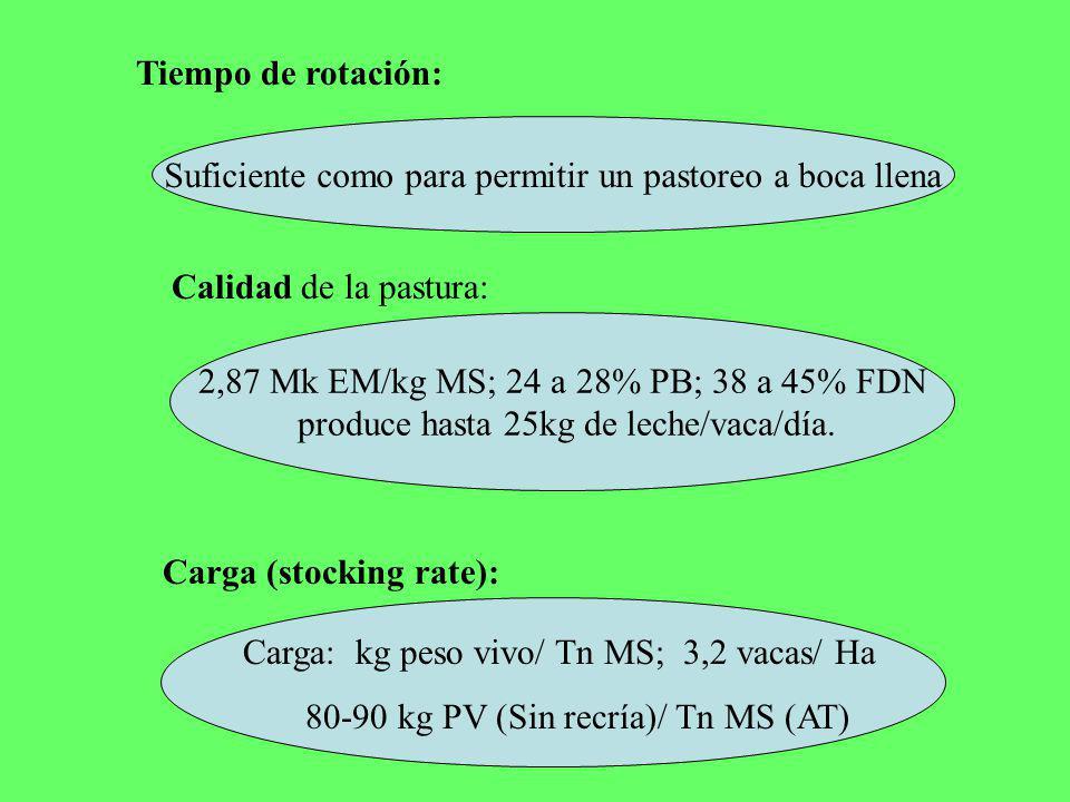 Tiempo de rotación: Suficiente como para permitir un pastoreo a boca llena Calidad de la pastura: 2,87 Mk EM/kg MS; 24 a 28% PB; 38 a 45% FDN produce