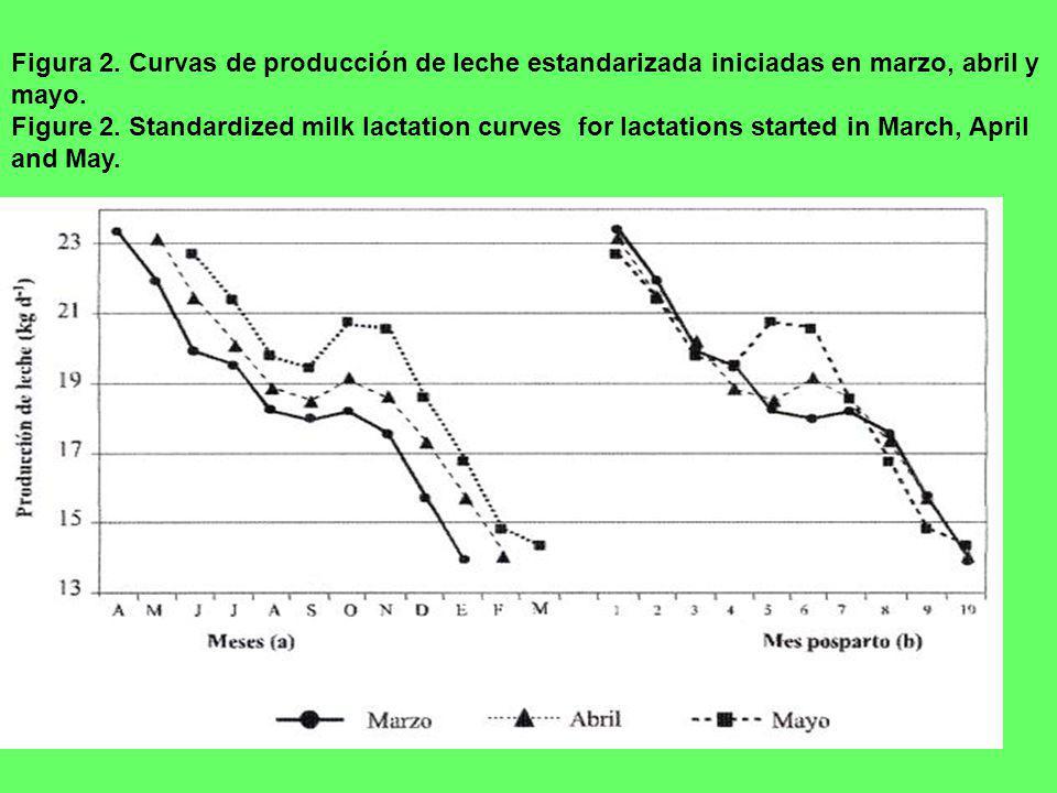Figura 2. Curvas de producción de leche estandarizada iniciadas en marzo, abril y mayo. Figure 2. Standardized milk lactation curves for lactations st