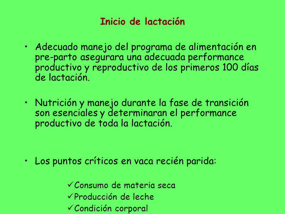 Inicio de lactación Adecuado manejo del programa de alimentación en pre-parto asegurara una adecuada performance productivo y reproductivo de los prim