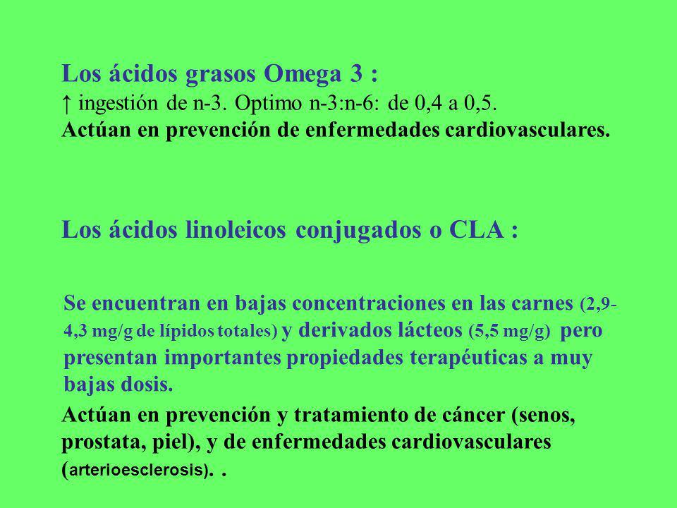 Los ácidos grasos Omega 3 : ingestión de n-3. Optimo n-3:n-6: de 0,4 a 0,5. Actúan en prevención de enfermedades cardiovasculares. Los ácidos linoleic